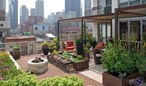 كيف تحول سطح منزلك الي حديقة رائعة؟