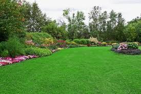 أعمال هامة في شركة تنسيق الحدائق بالرياض