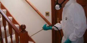 نصائح شركة رش مبيدات بالدمام لعملائها