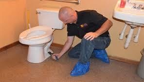 اسباب تهريب الحمام
